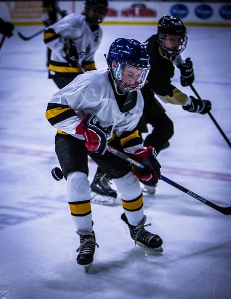 Bruins-102.jpg