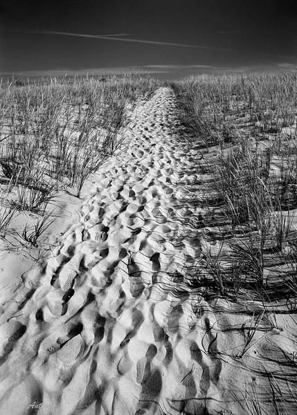 20120916-footprints-2003 ngcsu show.jpg