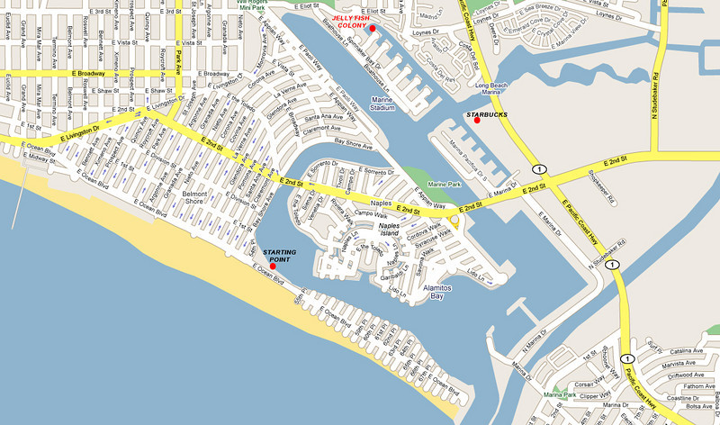 Alamitos Bay area map. Must see is Jelly Fish Colony in one of the channels (top of the map). For Starbucks coffee shop, park kayak at the Malls dock.