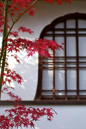 Myôshin-ji Taihô-in — 妙心寺 大法院