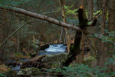 Buffam Falls