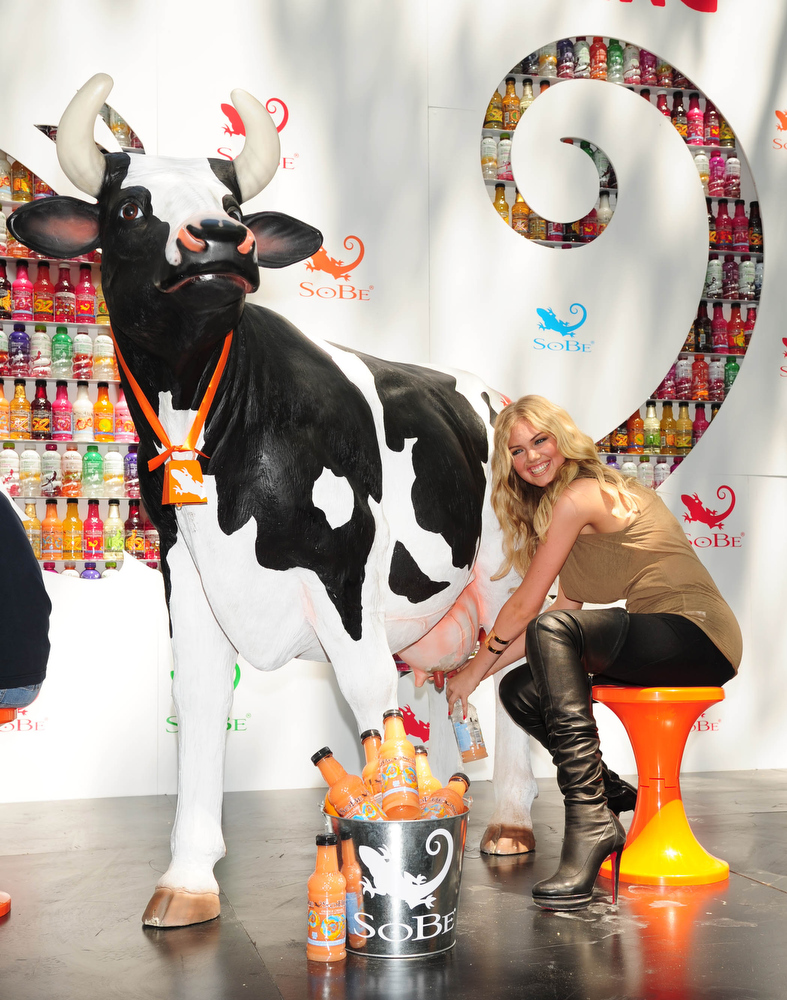 ". In this photograph provided by SoBe Try Everything - Sports Illustrated Swimsuit 2011 Rookie of the Year, Kate Upton tries her hand (both of them) at milking a ""cow\"" filled with SoBe Orange Cream at the brand\'s \""Try Everything\"" event in New York on Wednesday, May 25, 2011.  (Albert Ferreira/SoBe Try Everything via AP Images)"