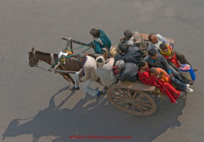 INDIA2010-0129A-365A.jpg