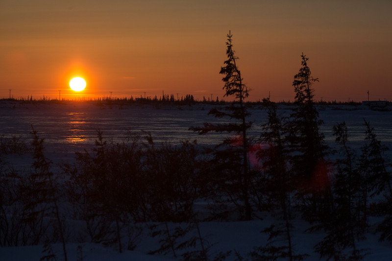 T Tundra Sunset.jpg
