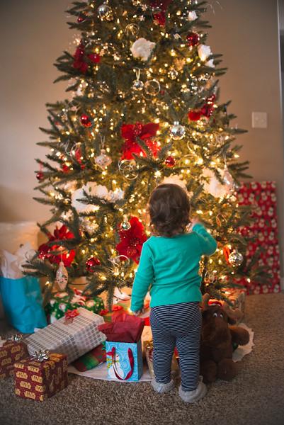 Christmas 2015 (Stevie's 2nd Christmas)