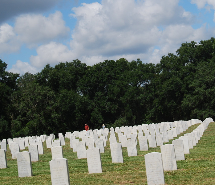 12 Graves at Florida National Cemetery.jpg