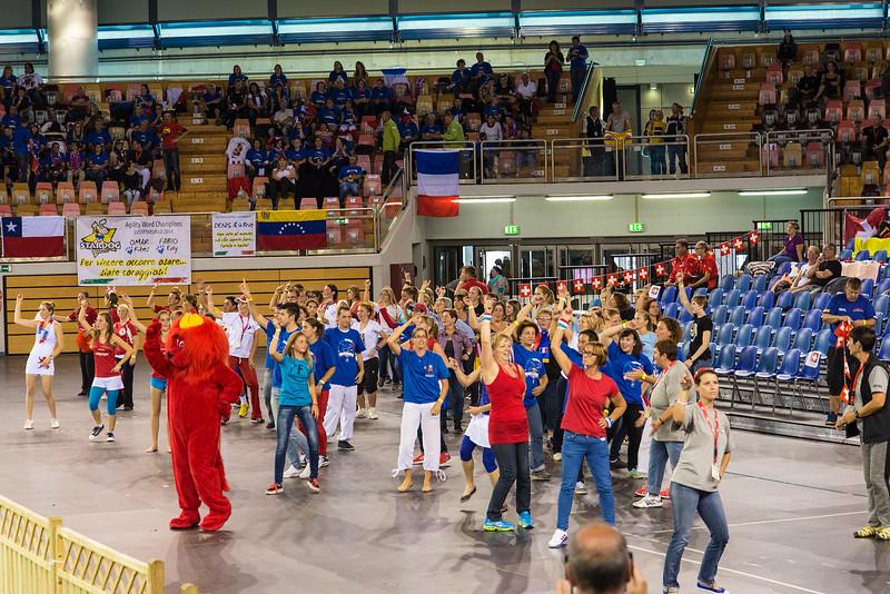 Agility World Championship 2014