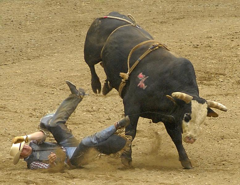 Coombs Bullarama 2008-2-33A.jpg