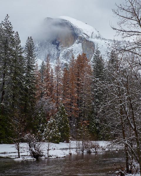 Family_012117_Yosemite_6155.jpg