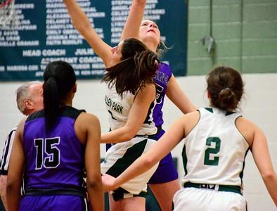 HS Sports - Woodhaven vs Allen Park Girls Basketball 20