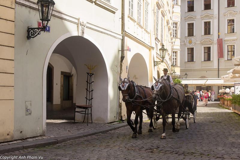Telyans in Prague July 2013 169.jpg