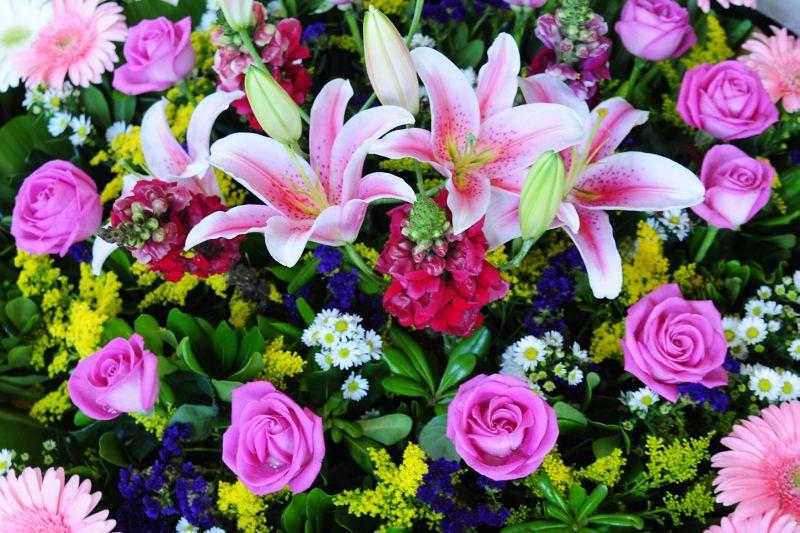 Flowers_6697.jpg