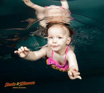 7-2016 Shark Pool
