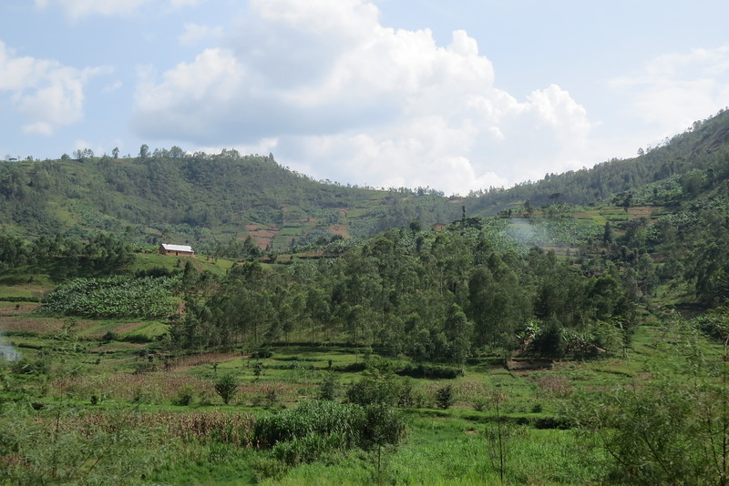 Tanzania 2016 128.JPG