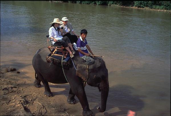 Elephants and River Kwai
