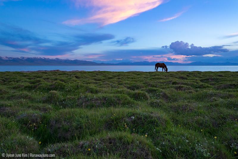 Song Kol Horse Trek-5498.jpg