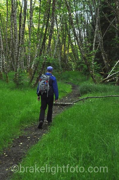 Hiking on Spring Island