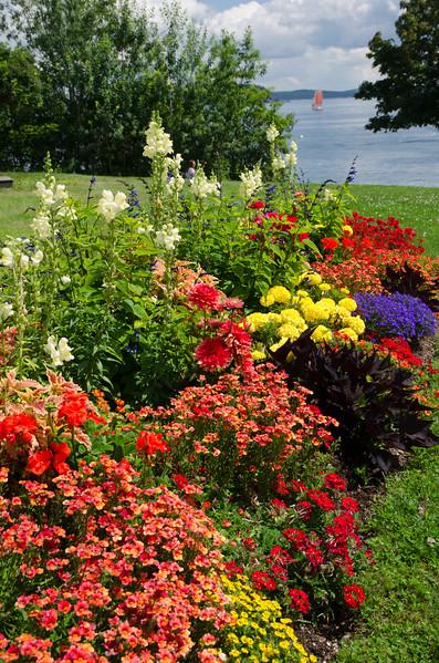 Acadia Nat'l Park-Terry's - July 2017-549.jpg