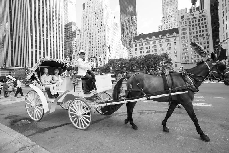 Central Park Wedding - Beth & Nancy-157.jpg