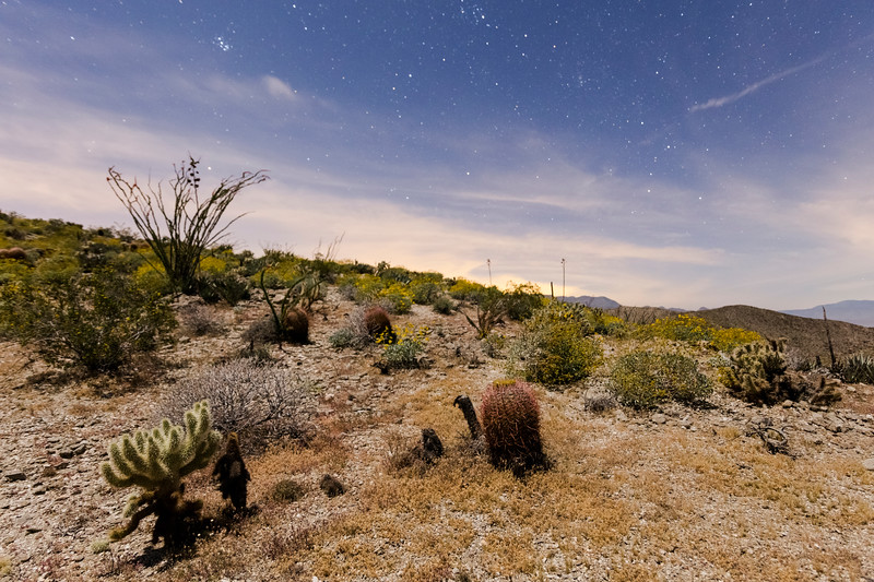 Near the End of Nautical Twilight Near Kenyon Overlook Trail in Anza-Borrego Desert