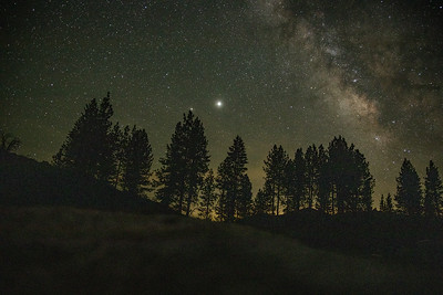 Sequoia Trip 2020