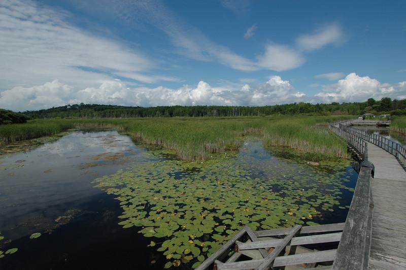 050705 7446 Canada - Midland - Wye Marsh with Brian _E _F _L ~E ~L.JPG
