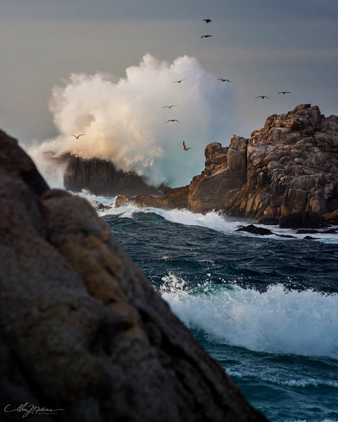 Click to See Monterey County Collection