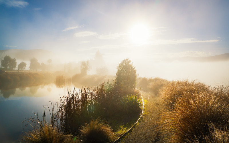 foggy-morning-lake-hayes-estate-new-zealand.jpg