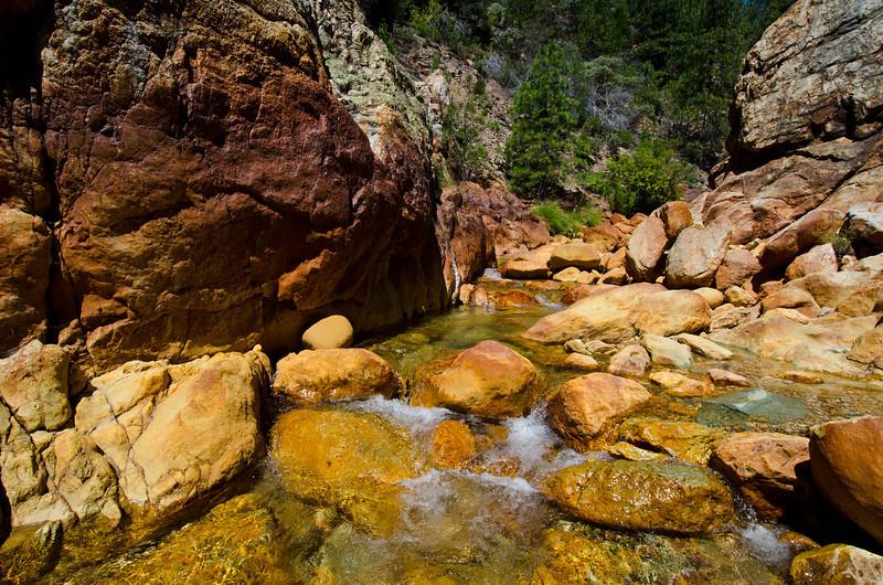 Little Backbone Creek - Shasta Lake - California - USA