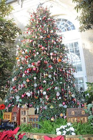 12-14-2008 Christmas Tree Day