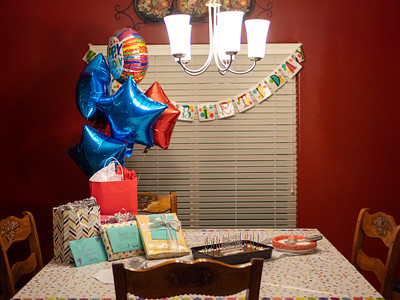 Shelby's 17th Birthday