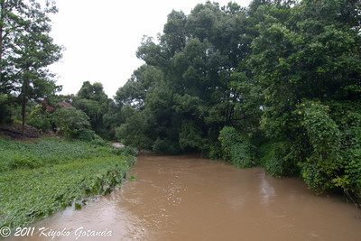 Burringbar Creek