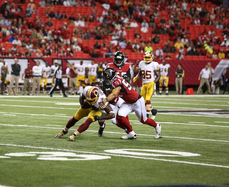 Falcons--4.jpg