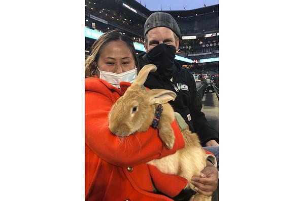 bunny-nat-042421