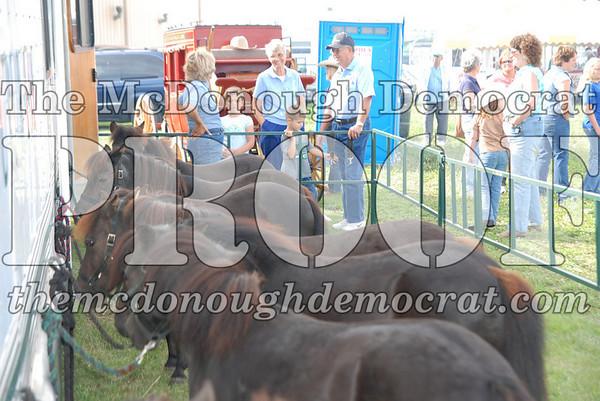 Bushnell Horse Show