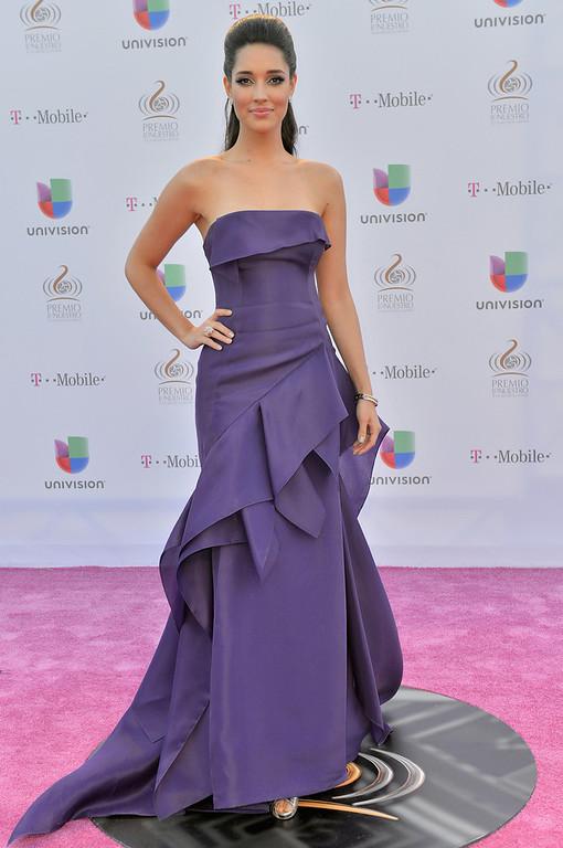 ". Amelia Vega arrives at the 25th Anniversary Of Univision\'s \""Premio Lo Nuestro A La Musica Latina\"" on February 21, 2013 in Miami, Florida.  (Photo by Gustavo Caballero/Getty Images for Univision)"