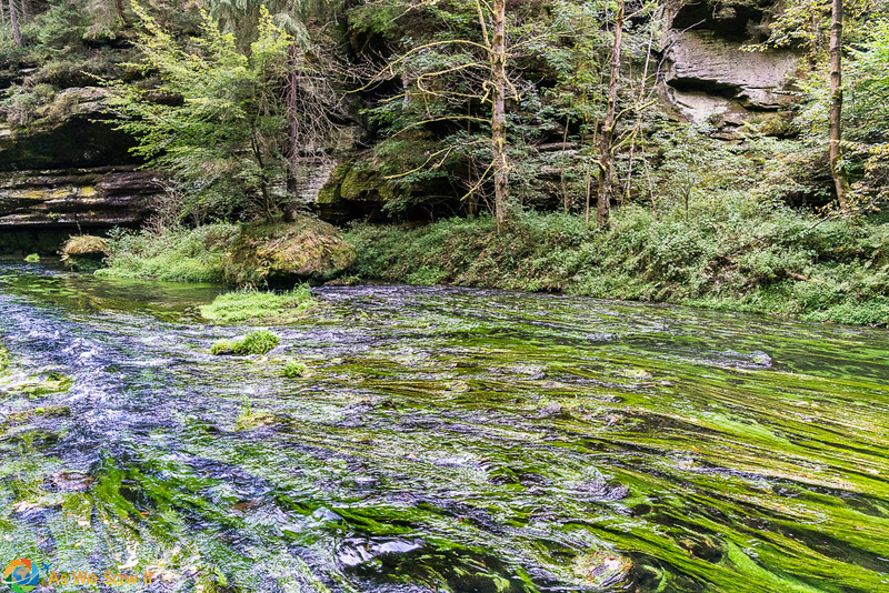 Gorges-Bohemian-Switzerland-07215.jpg