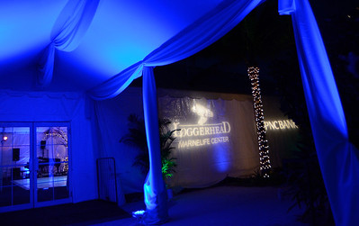 Loggerhead Marinelife Center 8th Annual Lights Out Gala