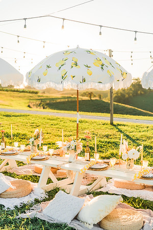Chenault Vineyards  • The Perfect Picnic