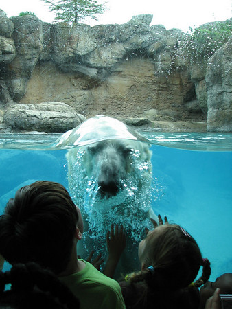 NC Zoo 050209