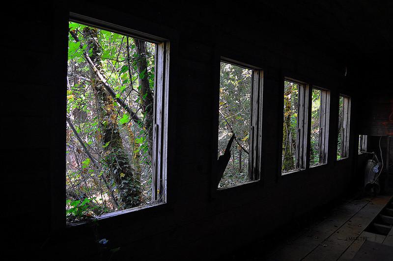 outside 10-8-2009.jpg