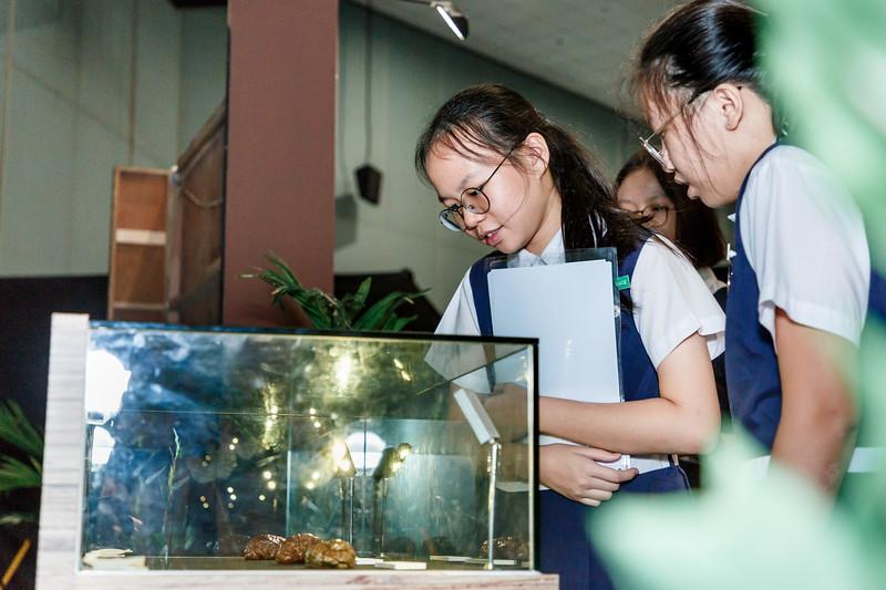 VividSnaps-Science-Centre-Brain-Fest-D2-030.jpg