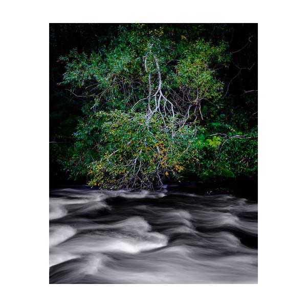 261_River_10x10.jpg