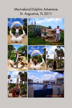 FL, St. Augustine - Marineland Dolphin Adventure