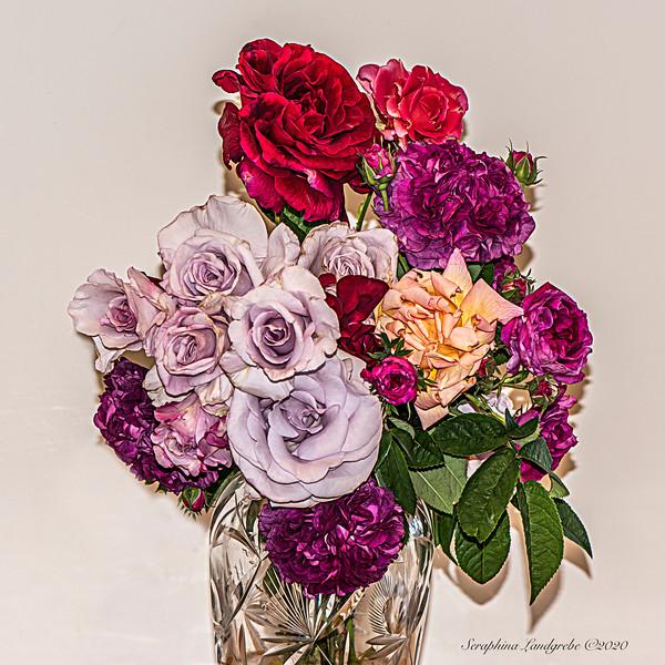 _DSC5187Summer Bouquet White.jpg