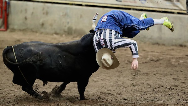 2018 Bull Fights