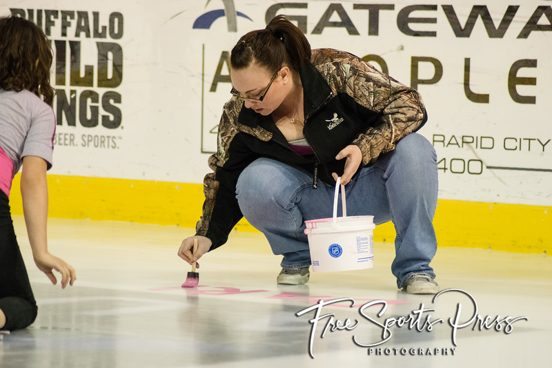 Paint the Rink Pink (2016)