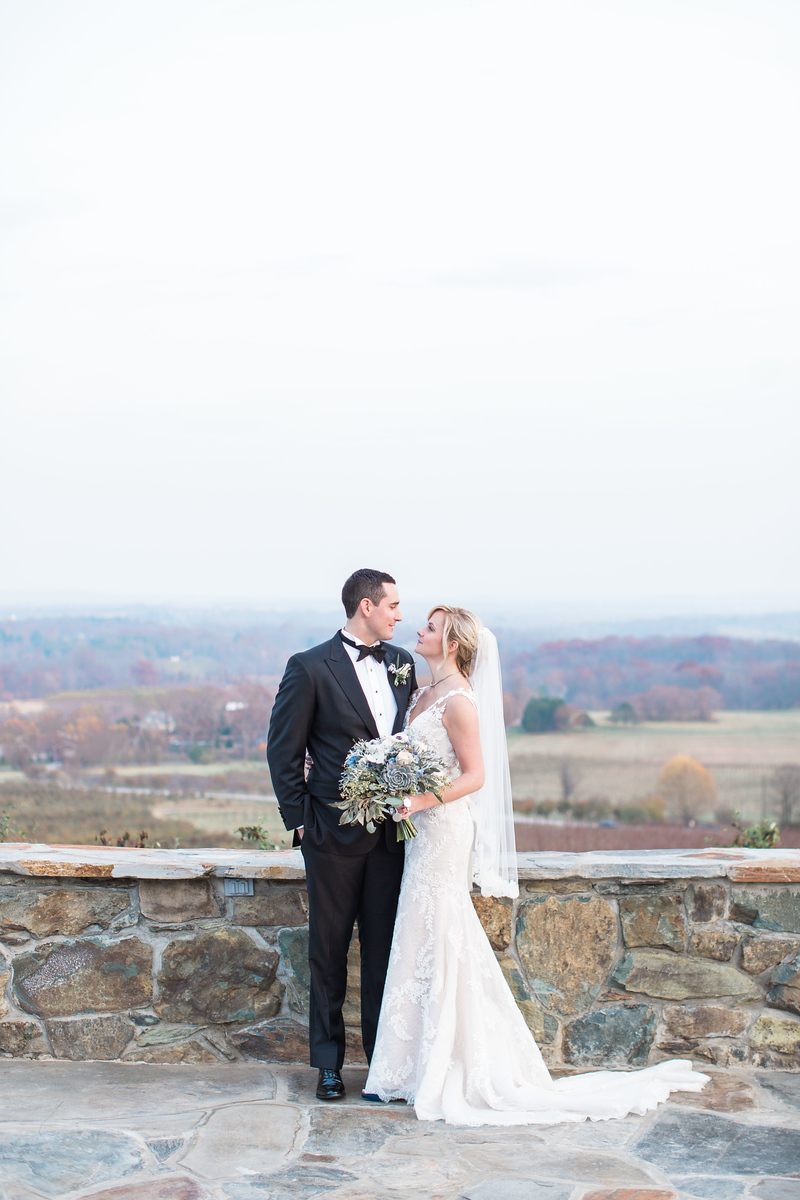 Meg and Kyle's Bluemont Vineyards wedding photos in Virginia. Photos by top Washington DC wedding photographer Jalapeno Photography.