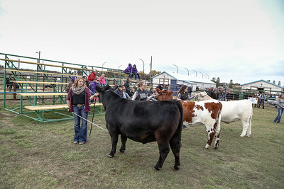 Swift Current Jr Stockman's Sept. 29 2018