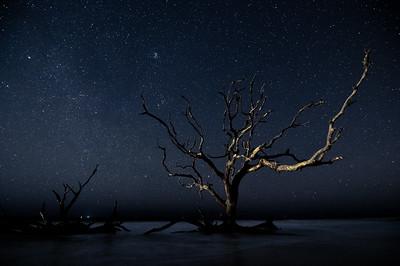 Jekyll Night Sky